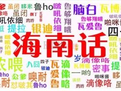 """海南方言有几多,不要乱讲""""bui 鲁 买"""""""