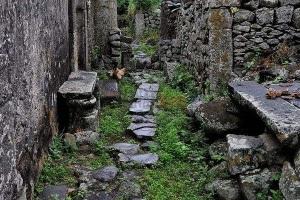 如何保存海南旧时的村落时光?